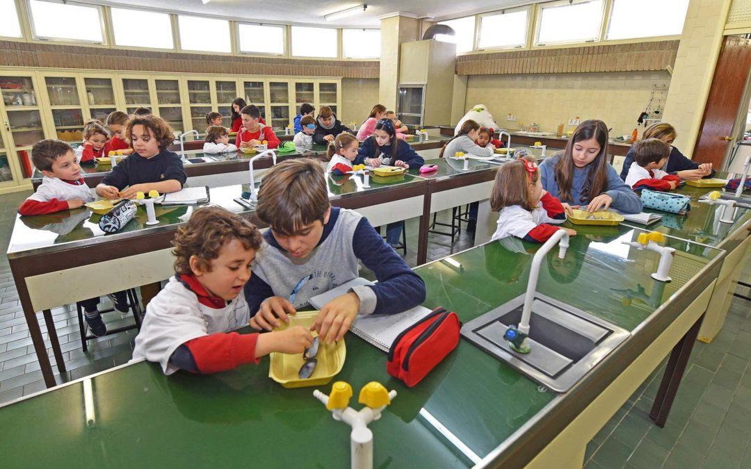 Protegido: Práctica del Mejillón 1ºESO- Infantil