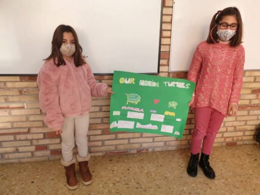 "Protegido: English: 4º Primary – ""Nocturnal Animals Working Group"""